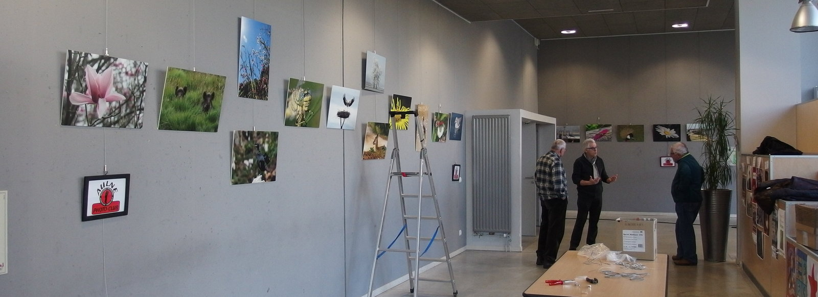 exposition faune et flore arvest pleyben 2018
